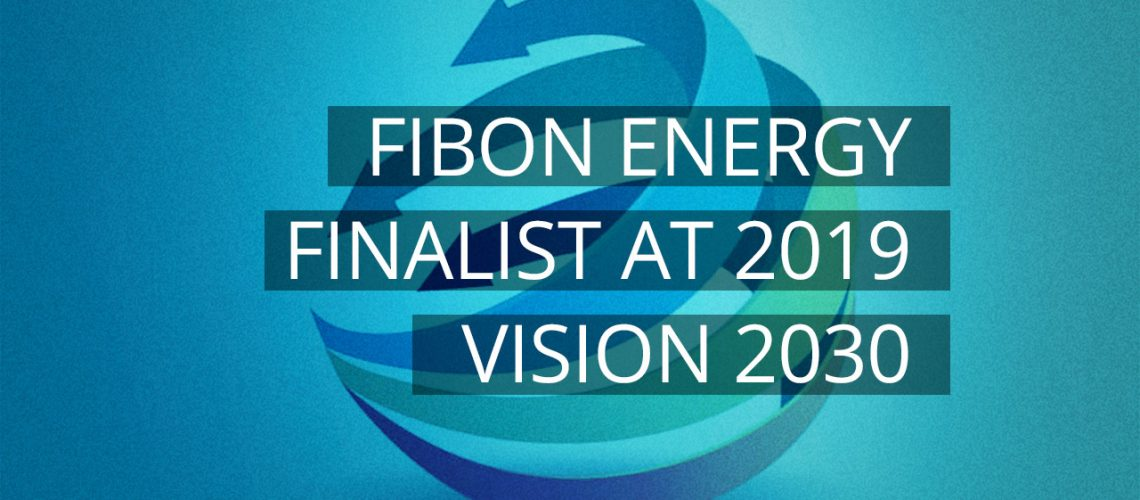 Fibon Energy is a finalist at the Vision 2030 Awards: South Africa's Future Makers