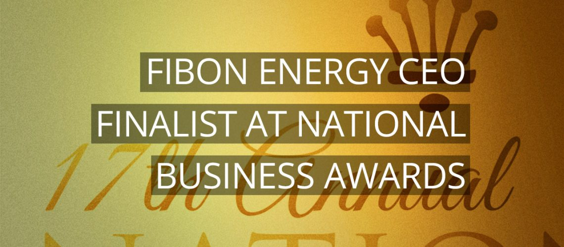 Fibon Energy's CEO is a finalist at the 17th Annual National Business Awards